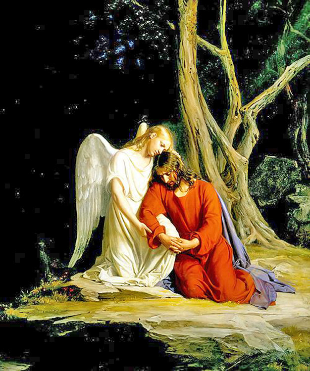 Looking for Angels Light of a Fathers Love